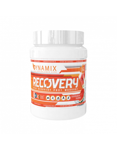 RECOVERY 700 Gr - DYNAMIX NUTRITION